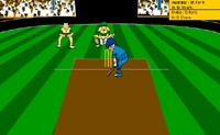 Virtual Cricket 2